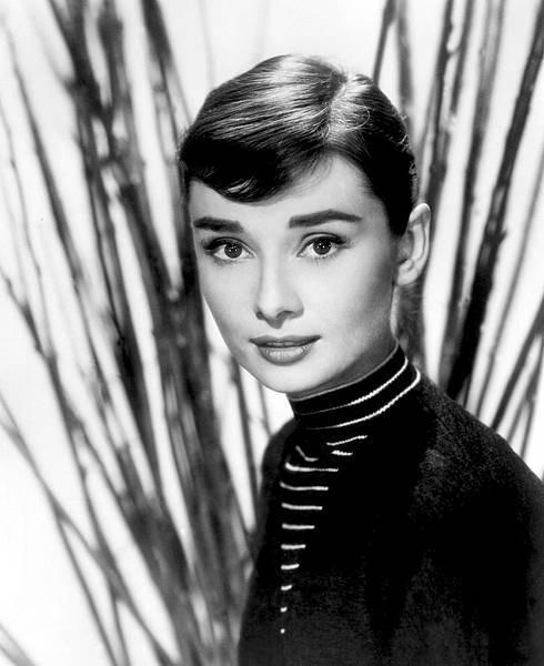 Audrey-10.jpg