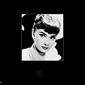 Audrey-33.jpg