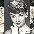 Audrey-34.jpg