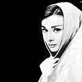 Audrey-49.jpg