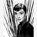 Audrey-50.jpg