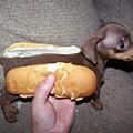 20111029-雖然是很想吃熱狗堡當早餐,不過這個......。