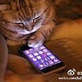 20120118-手機成癮症