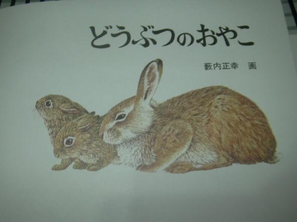 動物親子2.jpg