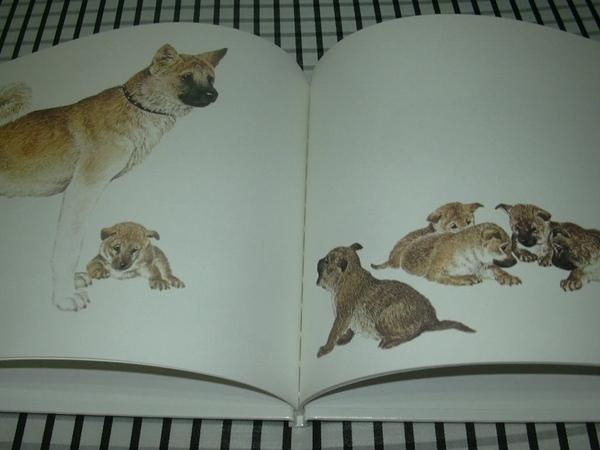 動物親子3.jpg