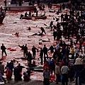 丹麥的暴行3