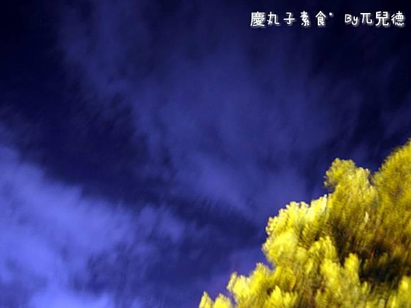 慶丸子素食13