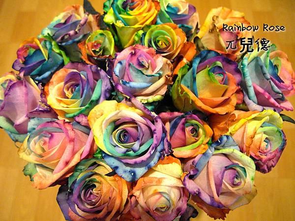 彩虹玫瑰1