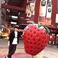 大直草莓園(4)
