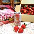 大直草莓園(13)