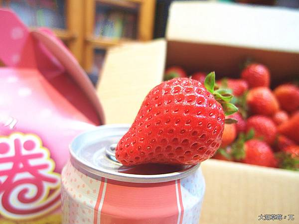 大直草莓園(22)