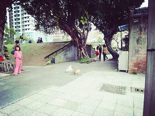 四四南村&好丘(18)