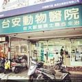 台安動物醫院(1)