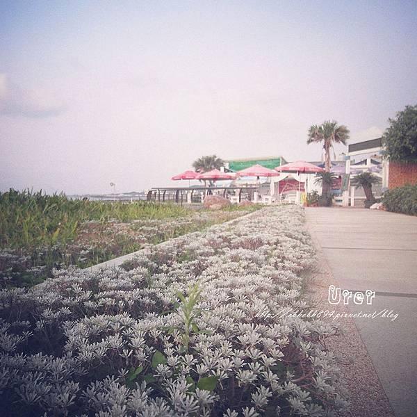 Villa Sugar(2)