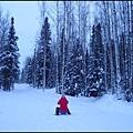 狗拉雪橇場3我拍照的怪姿勢被偷拍了.jpg