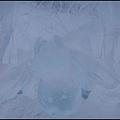 費爾班極地博物館  館外風景4冰蜘蛛.jpg