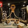 費爾班極地博物館1.jpg