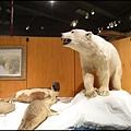 費爾班極地博物館3.jpg