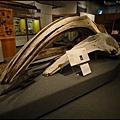 費爾班極地博物館5.jpg