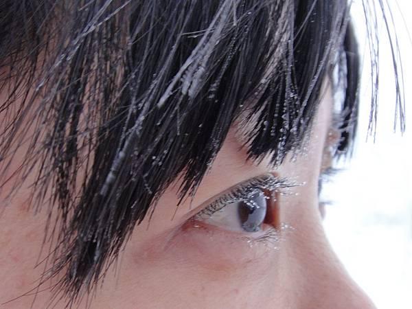 零下40度的眼..結了冰珠.JPG