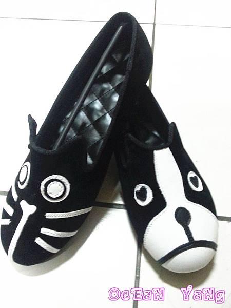 貓狗鞋-6