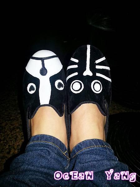 貓狗鞋-12