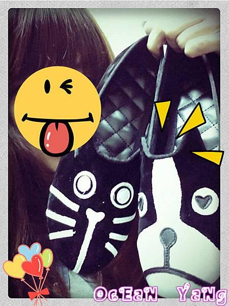 貓狗鞋-1