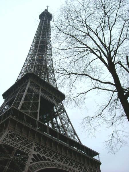 巴黎。冬 (11).jpg