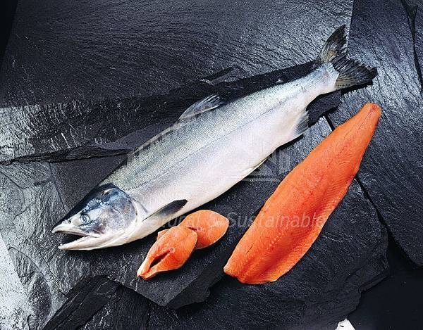raw-whole-and-filleted-pink-salmon.jpg
