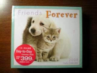friends_forever.JPG