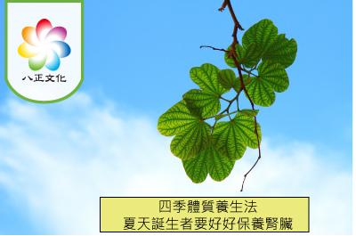 四季體質養生法-夏季