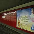 chinese new year plakat