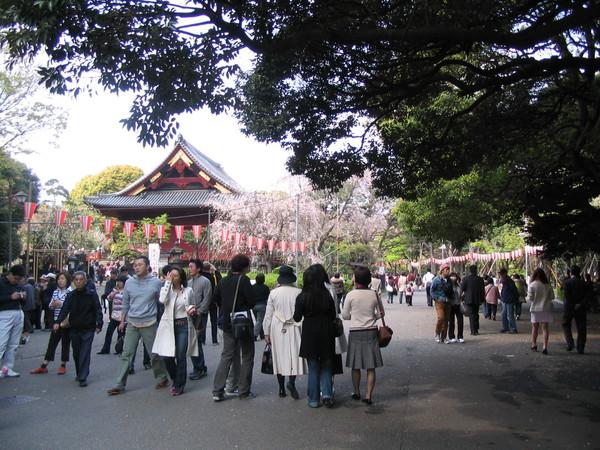 上野公園-04
