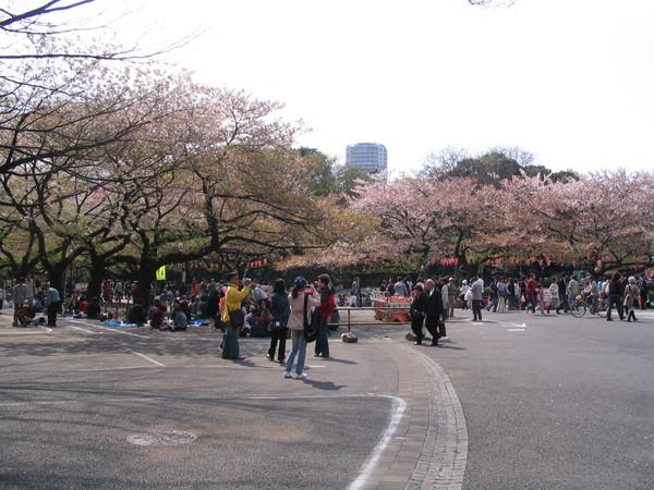 上野公園-07