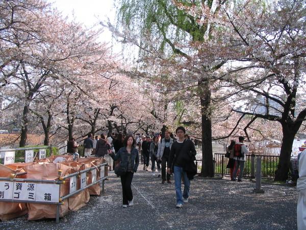上野公園-10