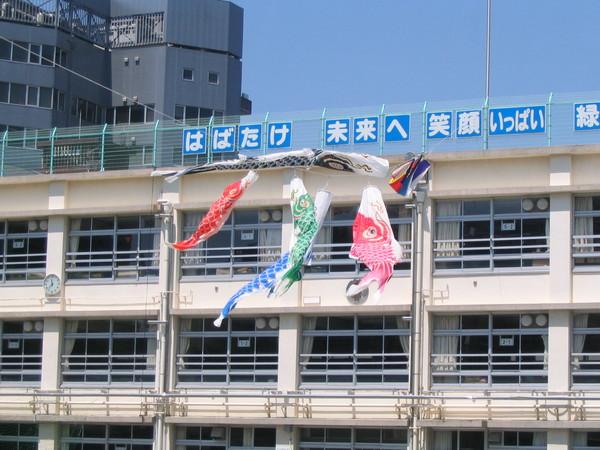 070429散步行-15-鯉魚旗