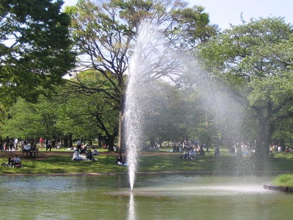 070429散步行-代代木公園-13