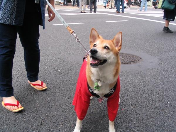 070513神田祭-04