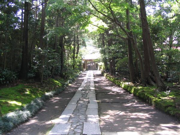 070526鐮倉-13-壽福寺