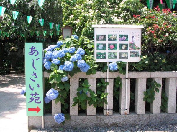 070602白山神社-03