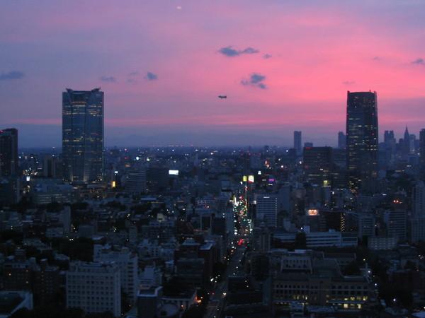 070603東京鐵塔-04