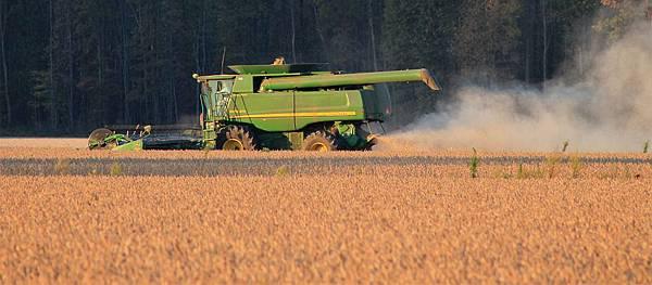 harvest-1033756_960_720