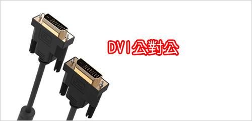 DVI-公對公.jpg