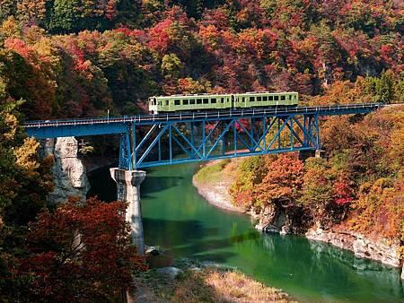 圖4:威爾森之樹是列車行駛中最受歡迎的景點.jpg