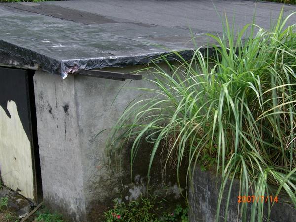 阿公的舊車庫