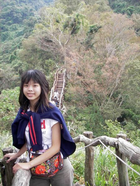 背後的台灣櫸冒出紅色的新葉