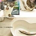 挑食普陀也愛吃丁香魚乾