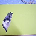 貓夫人的寫真書
