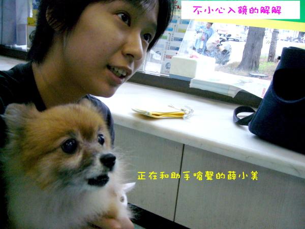 和助手說話的解解及和助手嗆聲的薛小美