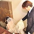 婚0112--180.jpg